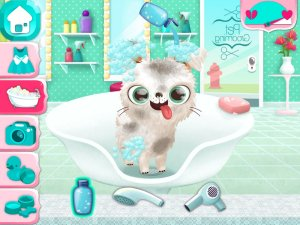 Miss Hollywood - Fashion Pets Game for Kids (Стильные)
